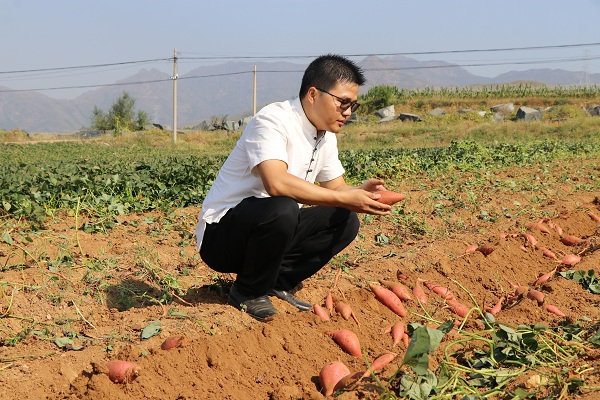 85后农村小伙地瓜CEO宋章峰十年造就亿万产业