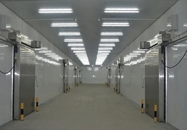 薯立方万吨级智能冷库 全程可控 长久保鲜