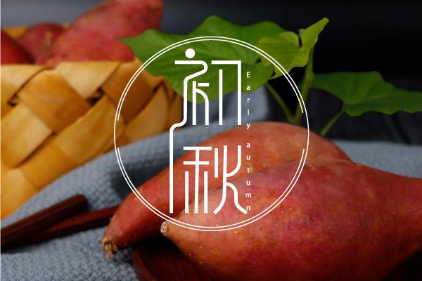 初秋 | 吃薯 | 滋养